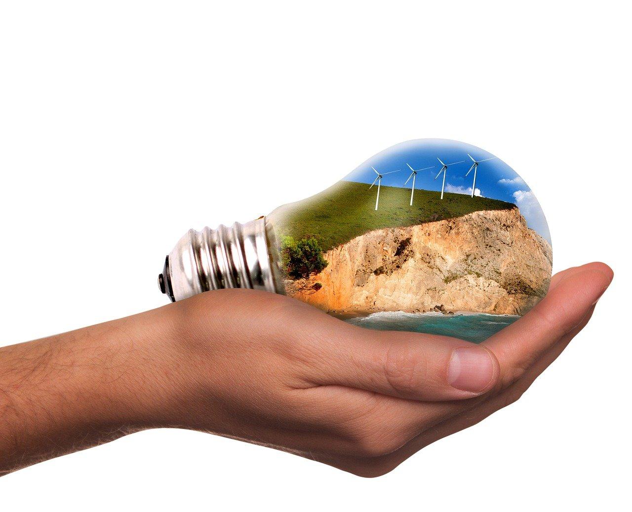 light bulb containing green energy